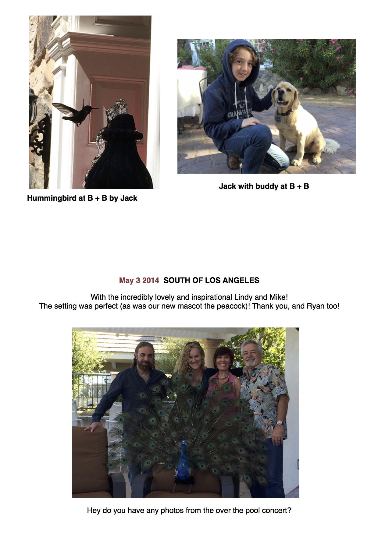 Blog Page # 34