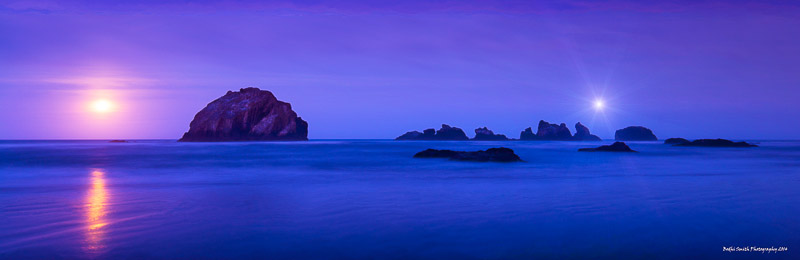 Face of Aphrodite by Moonlight (2014) Signature.jpg