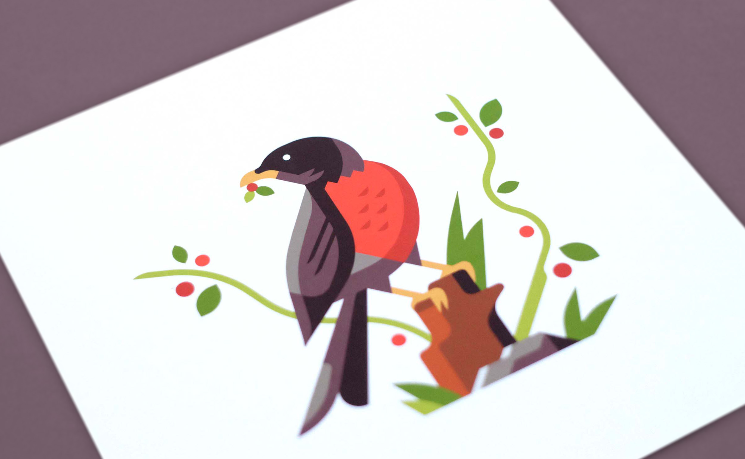 Robin illustration print photo by Matt Anderson and Canopy Design and Illustration