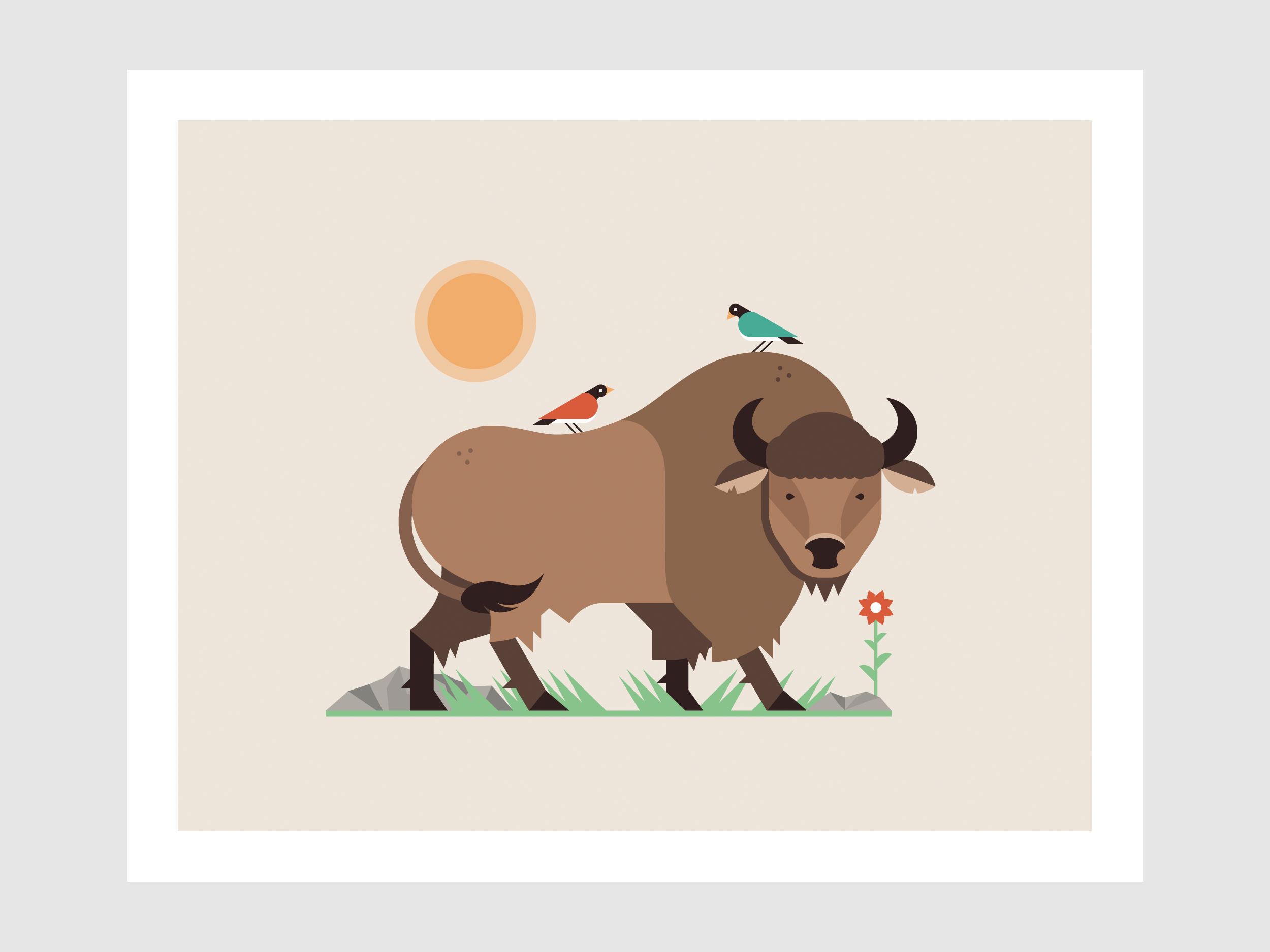 Buffalo Illustration - Art Print - by Matt Anderson