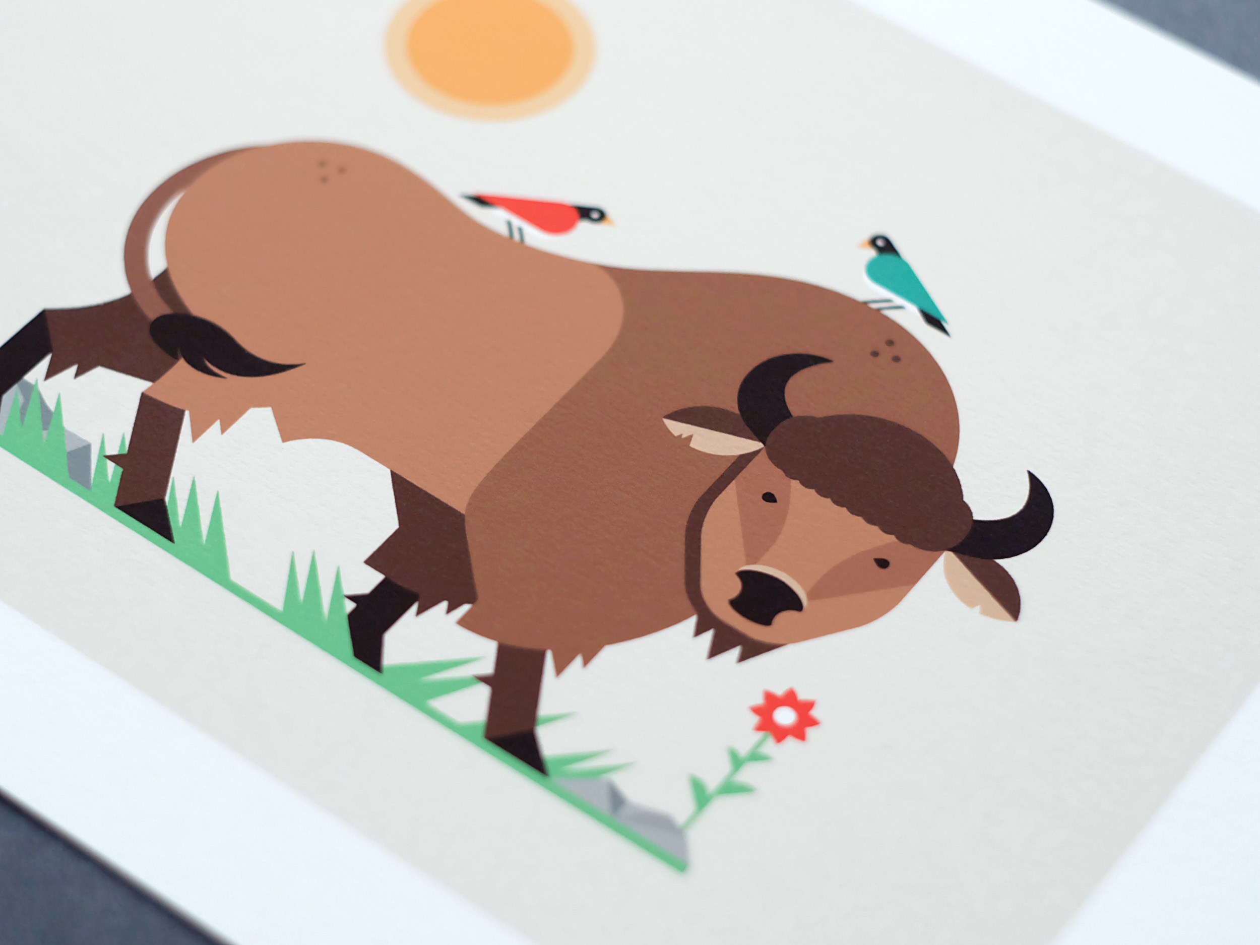 Buffalo Illustration - Print Photo - Art by Matt Anderson