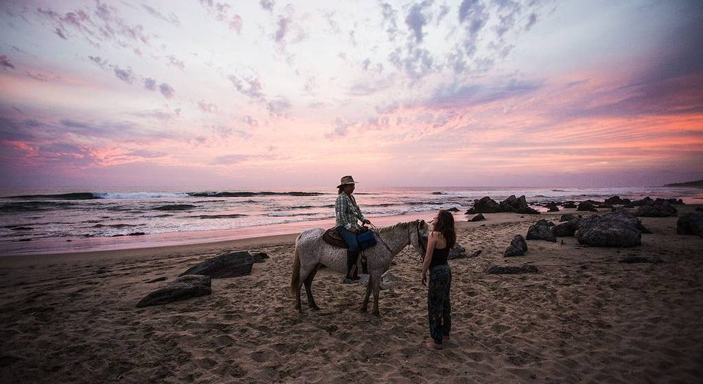 161-beach-horse-tour-a-octavio-a-pink-sky-a-present-moment-retreat-a-boutique-hotel-a-spa-resort-a-yoga-retreat-a-res.jpg