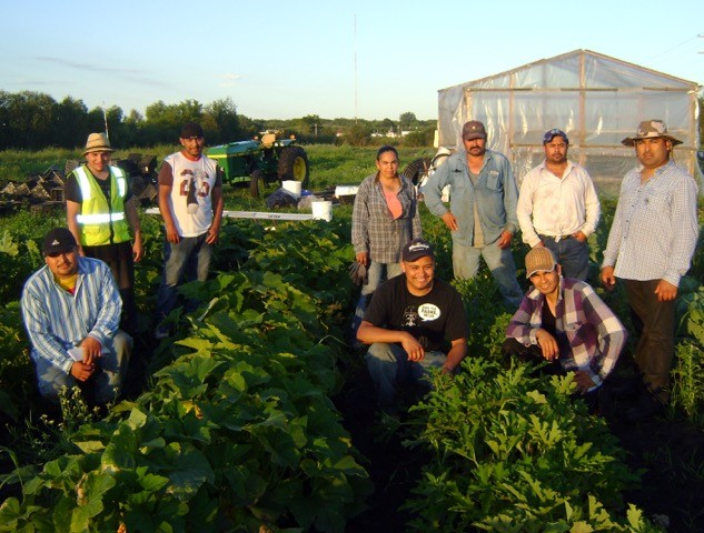 The Agua Gorda Cooperative of Hispanic farmers from Long Prairie, MN, started business producing food on community garden plots. The co-op now owns land for a business that is growing in sales both to rural central Minnesota and to the Twin Cities. CREDIT: Courtesy Shared Ground Farmers Cooperative