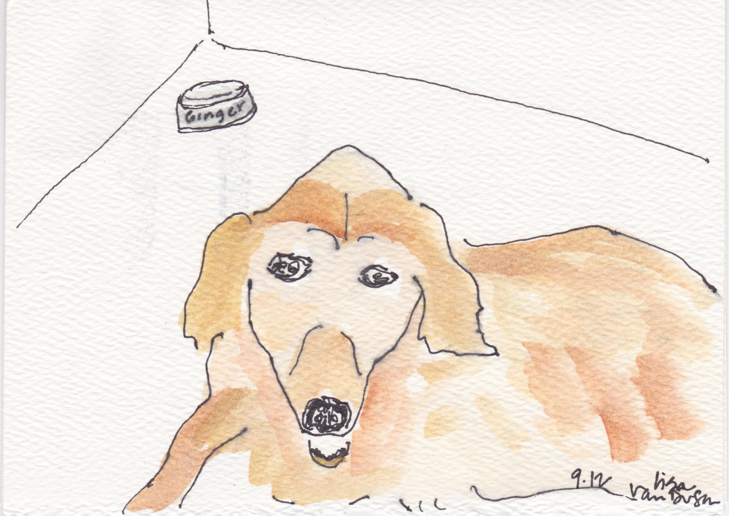 ginger was a fine, fine dog