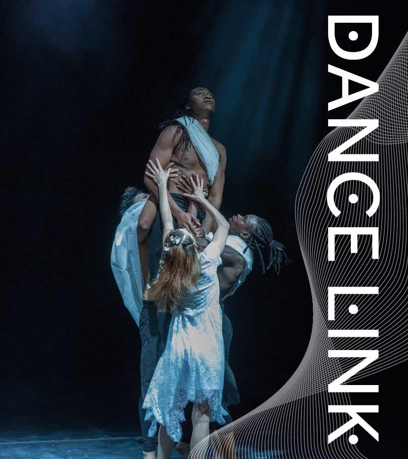 dancelink_logo-web.jpg