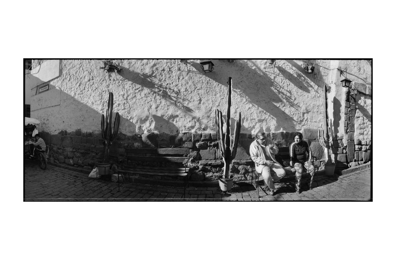 Cuzco_Cactus.jpg