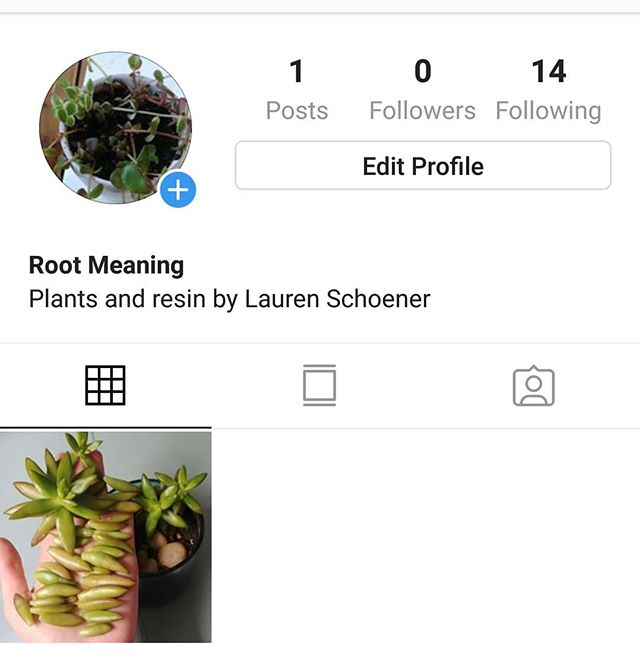 Hello friends! Over the next few weeks, I'll be going through a rebrand and will likely not update this account beyond the end of May. Please follow my further craft adventures over at @rootmeaning. Thanks and see you there!
