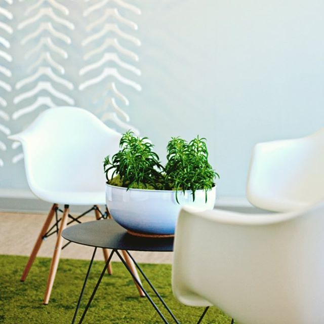 Healthy work starts with the integration of nature into the built environment. Pull planting indoors and employees outdoors for an especially delightful day at the office . . . . #2yokedesign #breathedeeply #workflo #healthyoffice #airpurifyingplants #wellnessdesign #inspiredbynature #wellnessatwork #techoffice #naturalmaterials #indooroutdoor #workplacewellness #workplacedesign