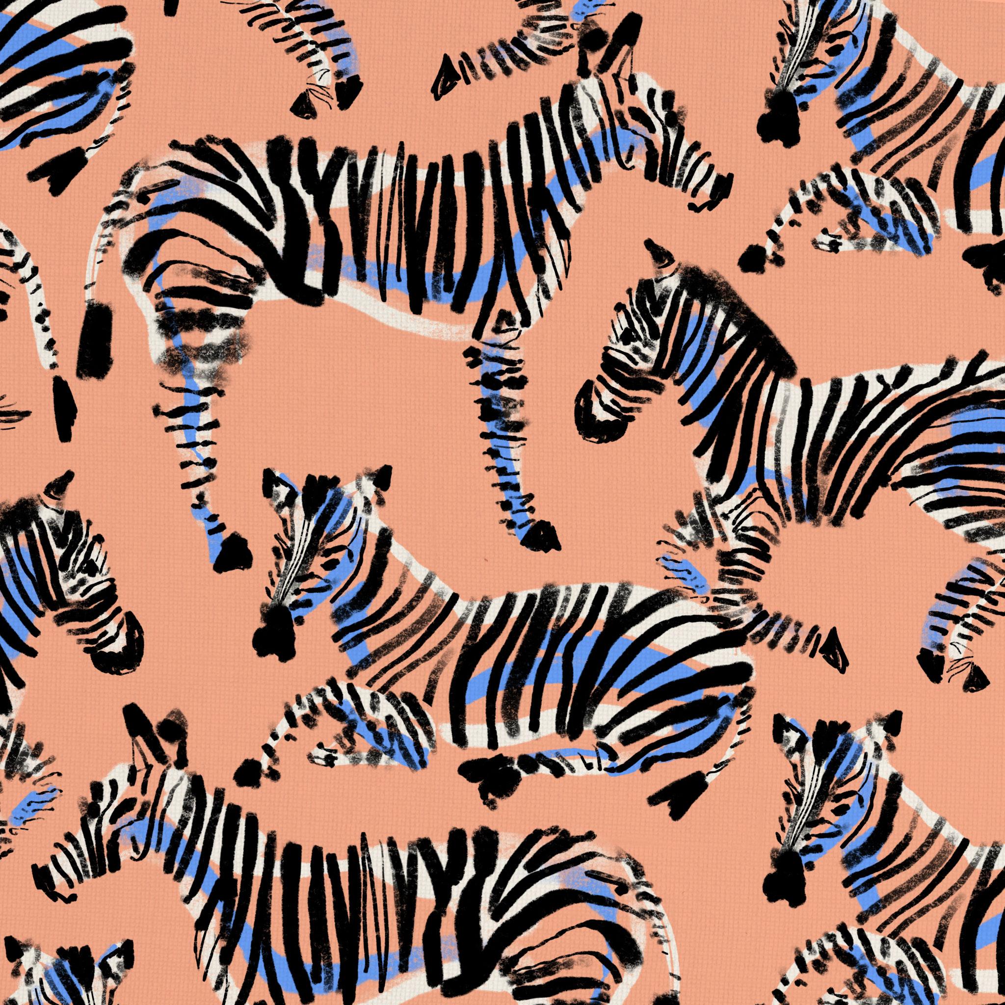 AliMac_Zebras.jpg