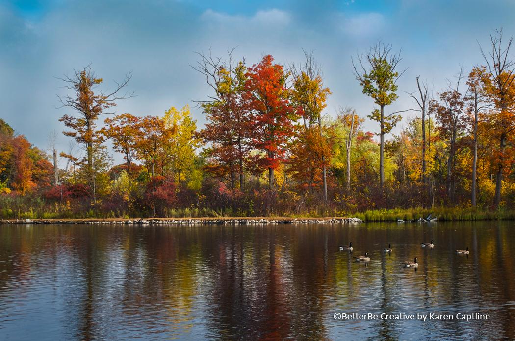 BOTANICAL - Autumn splendor.jpg