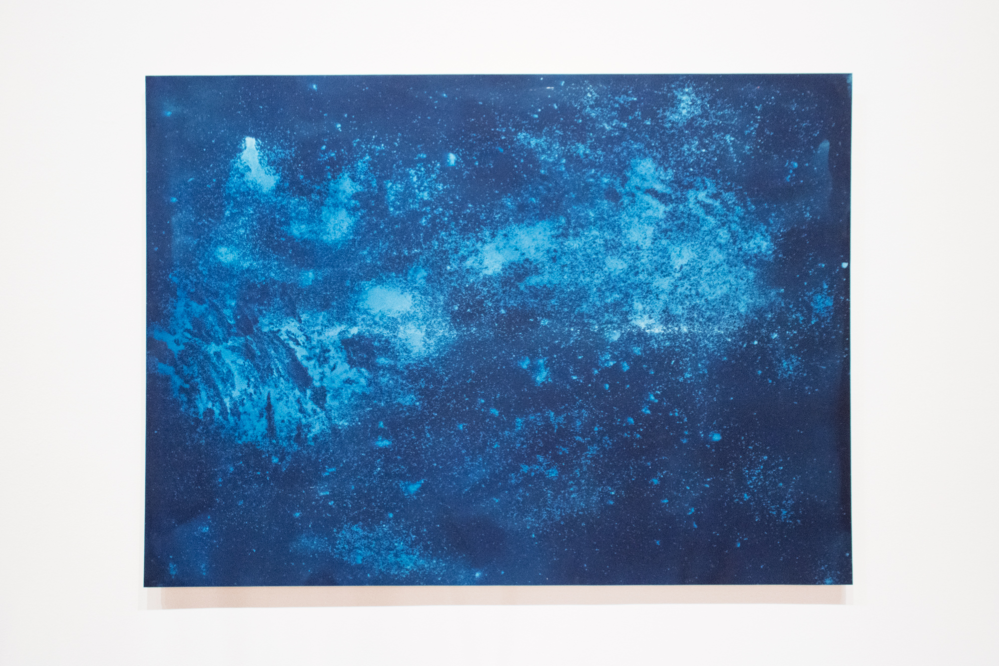 Site: Tree,   cyanotype on paper (rocks and residue extracted from clay sourced from Site), 44x60in