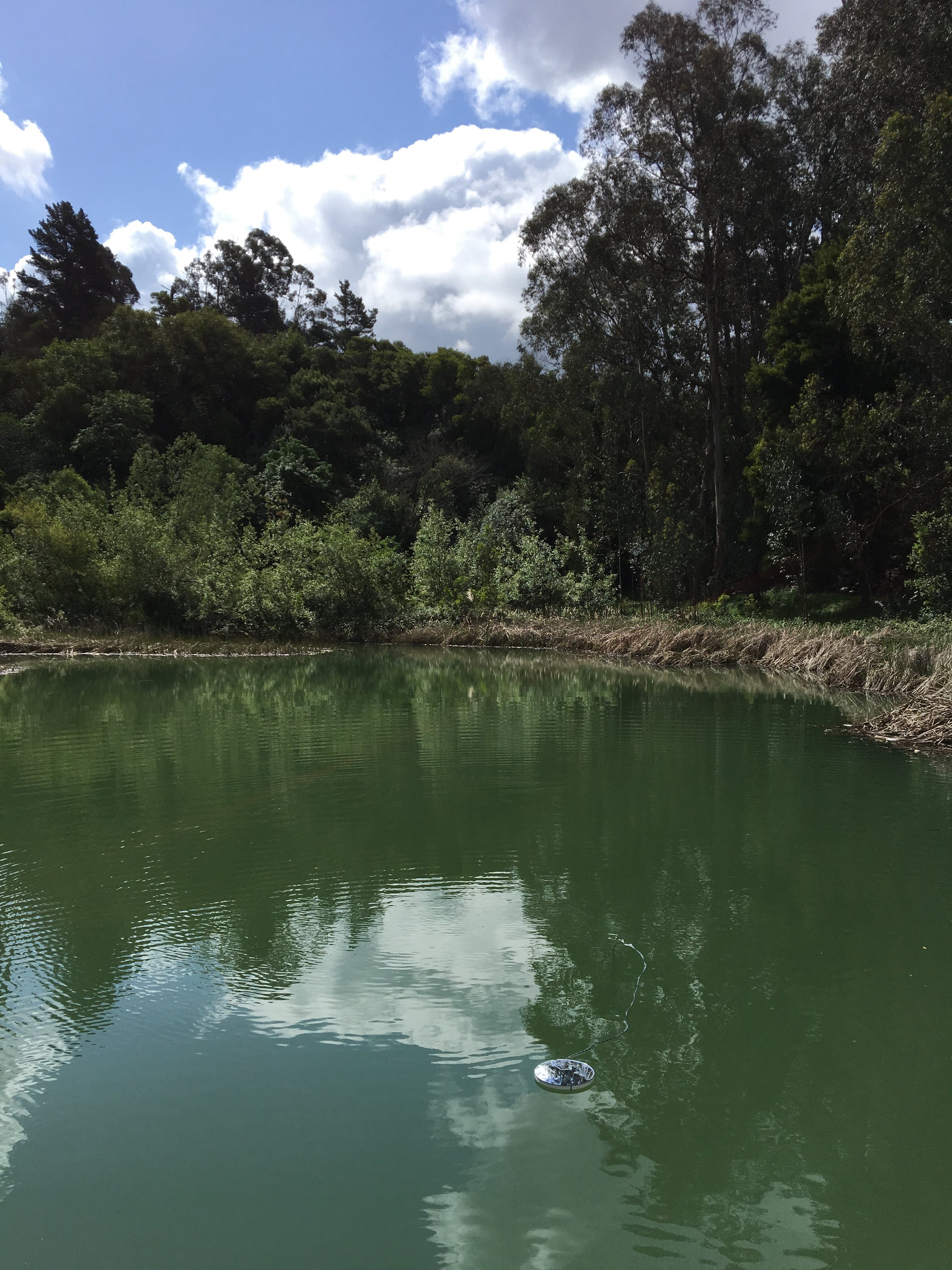 Site: Lake