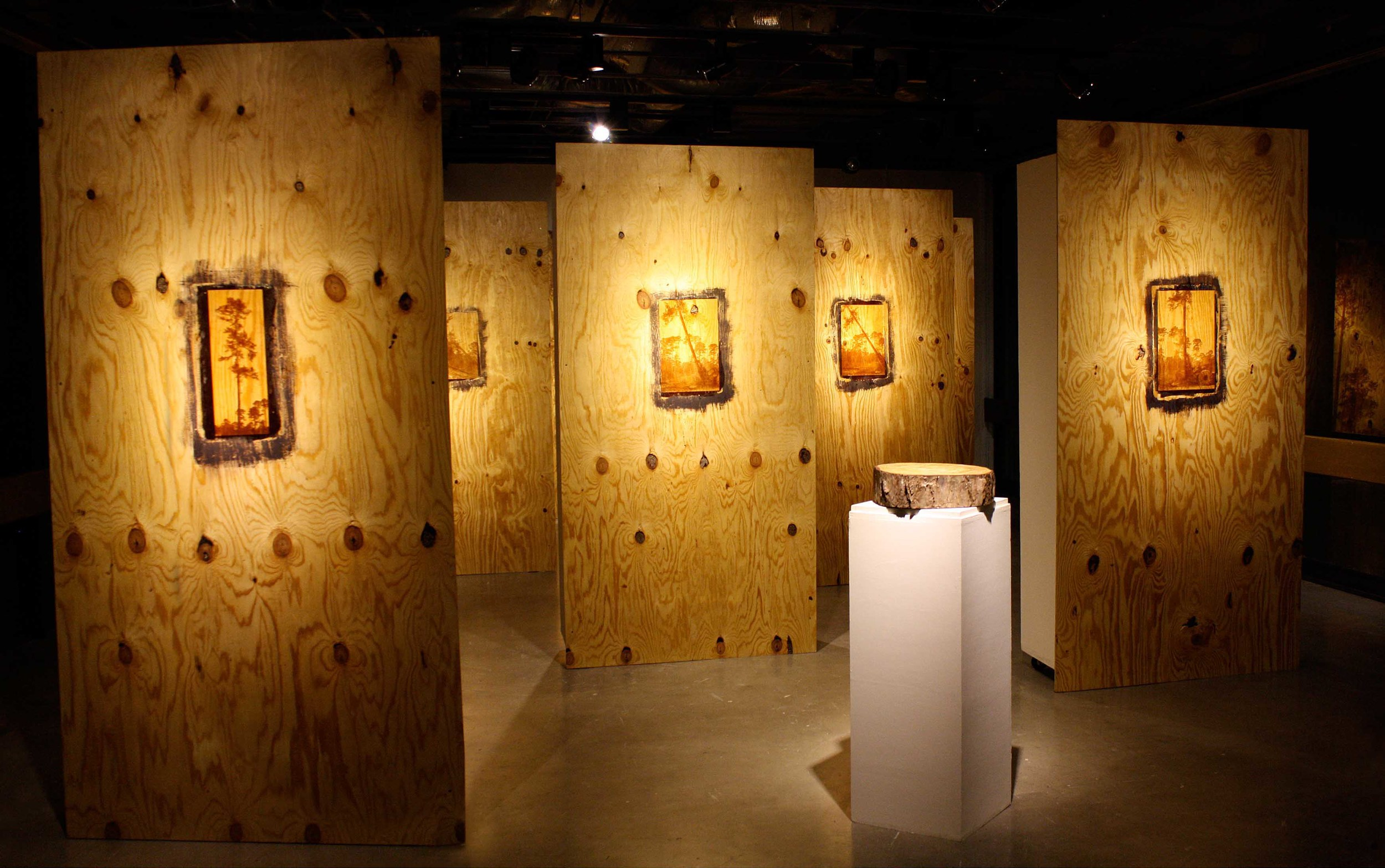 """Memory of Trees"" (Plywood Forest)"