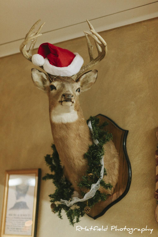 mounted_christmas_deer