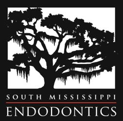 So MS Endo logo-revised-K 5.jpg