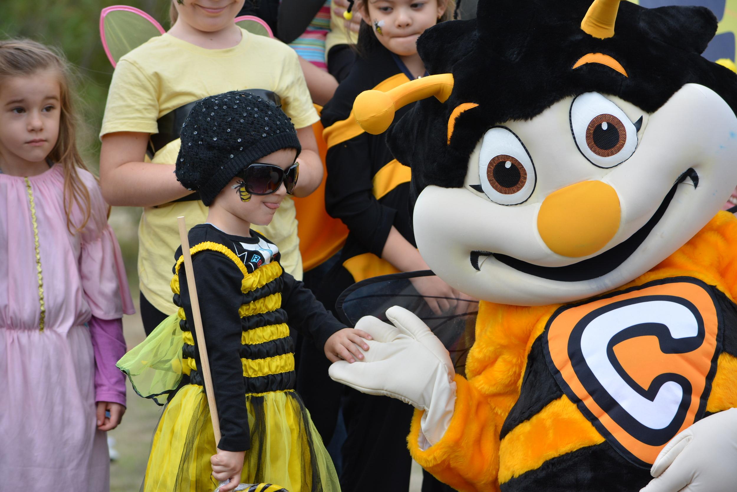 Honey Festival 2014 172.JPG