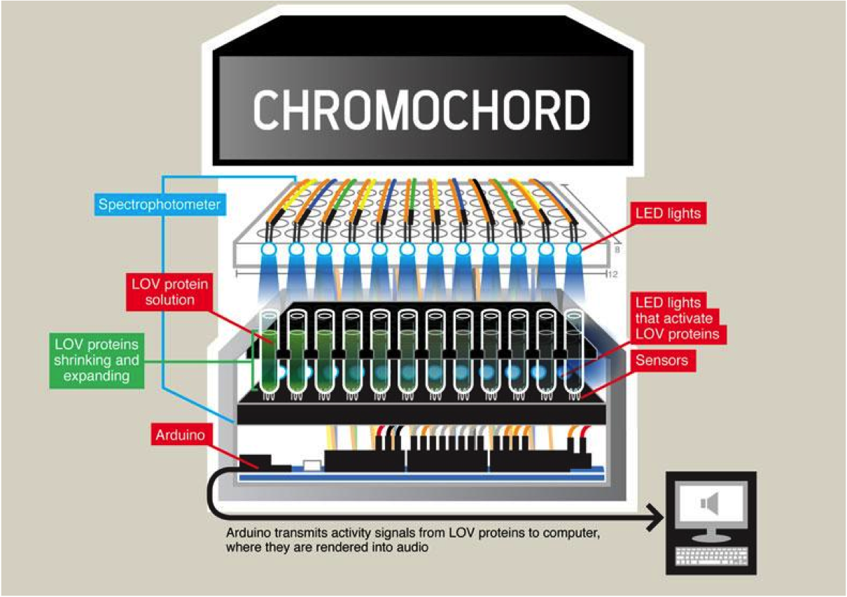 The Chromochord Illustration.png