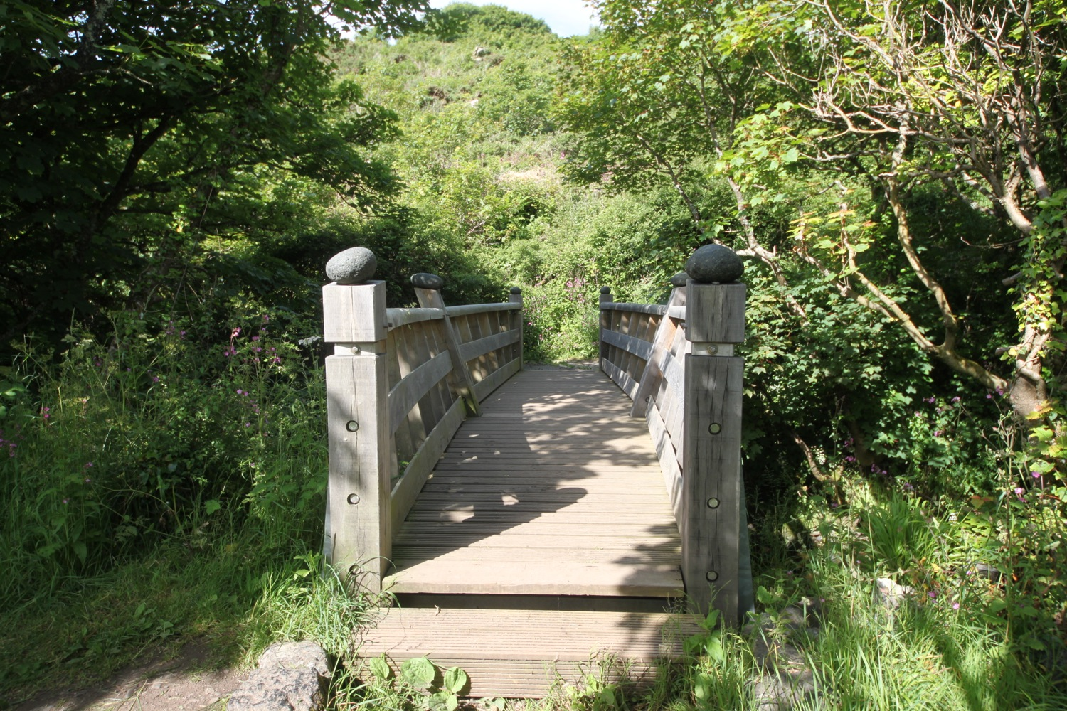 poltesco footbridge