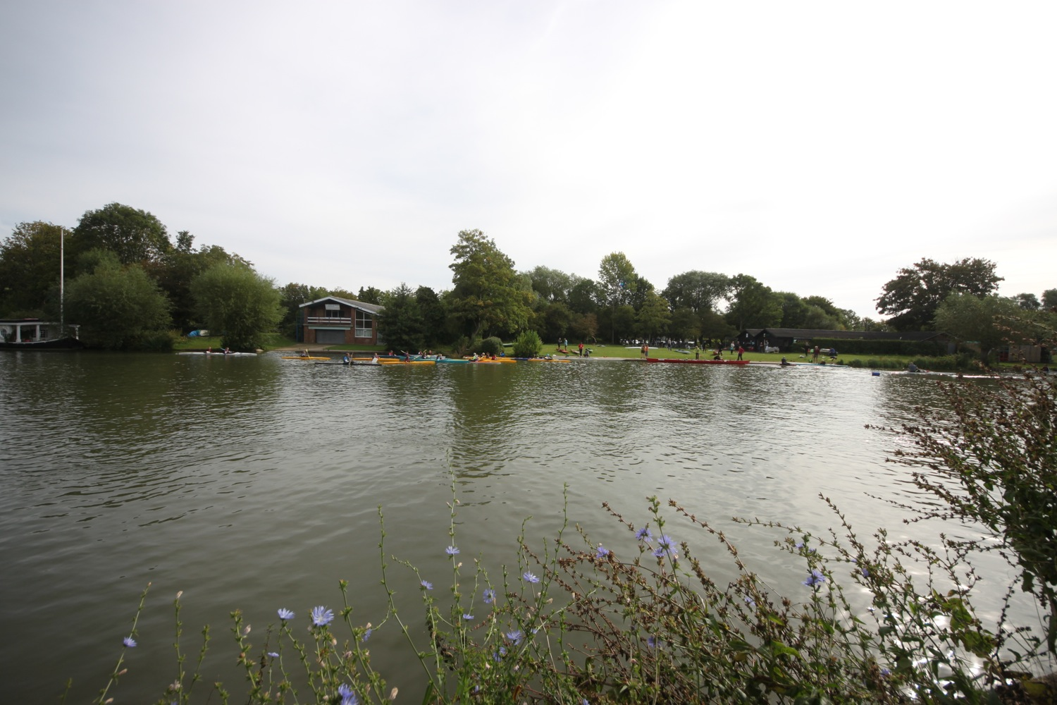 falcon rowing and canoeing club