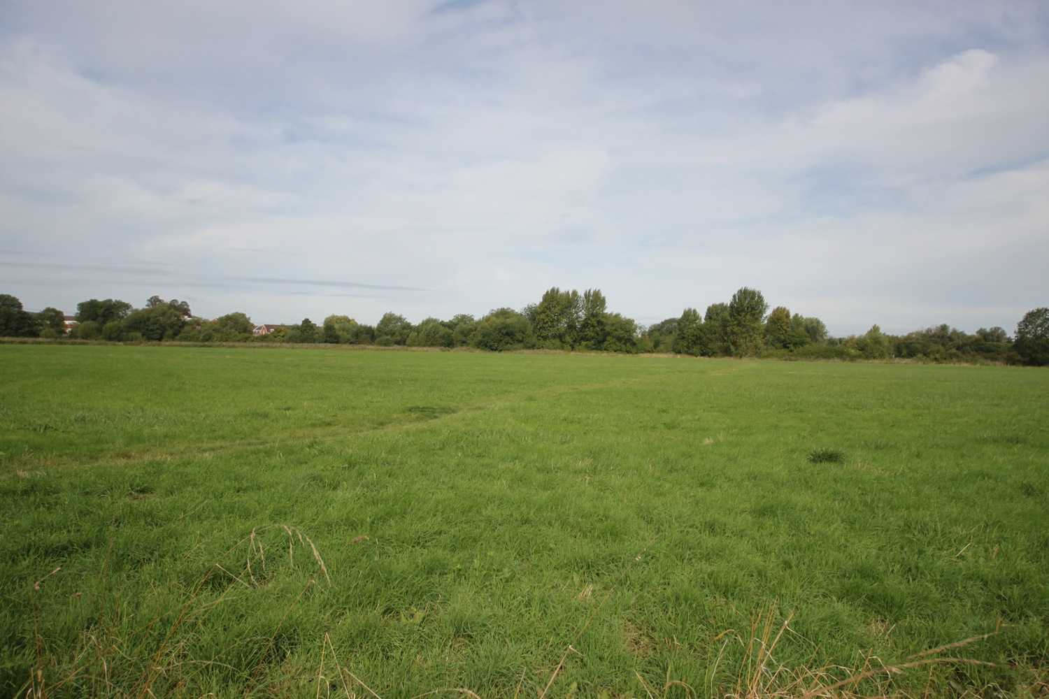 iffley meadows