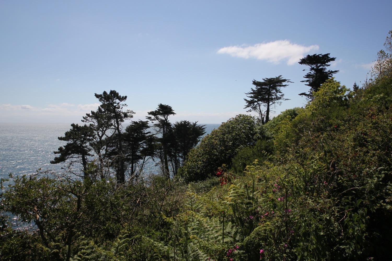 kemyel crease nature reserve