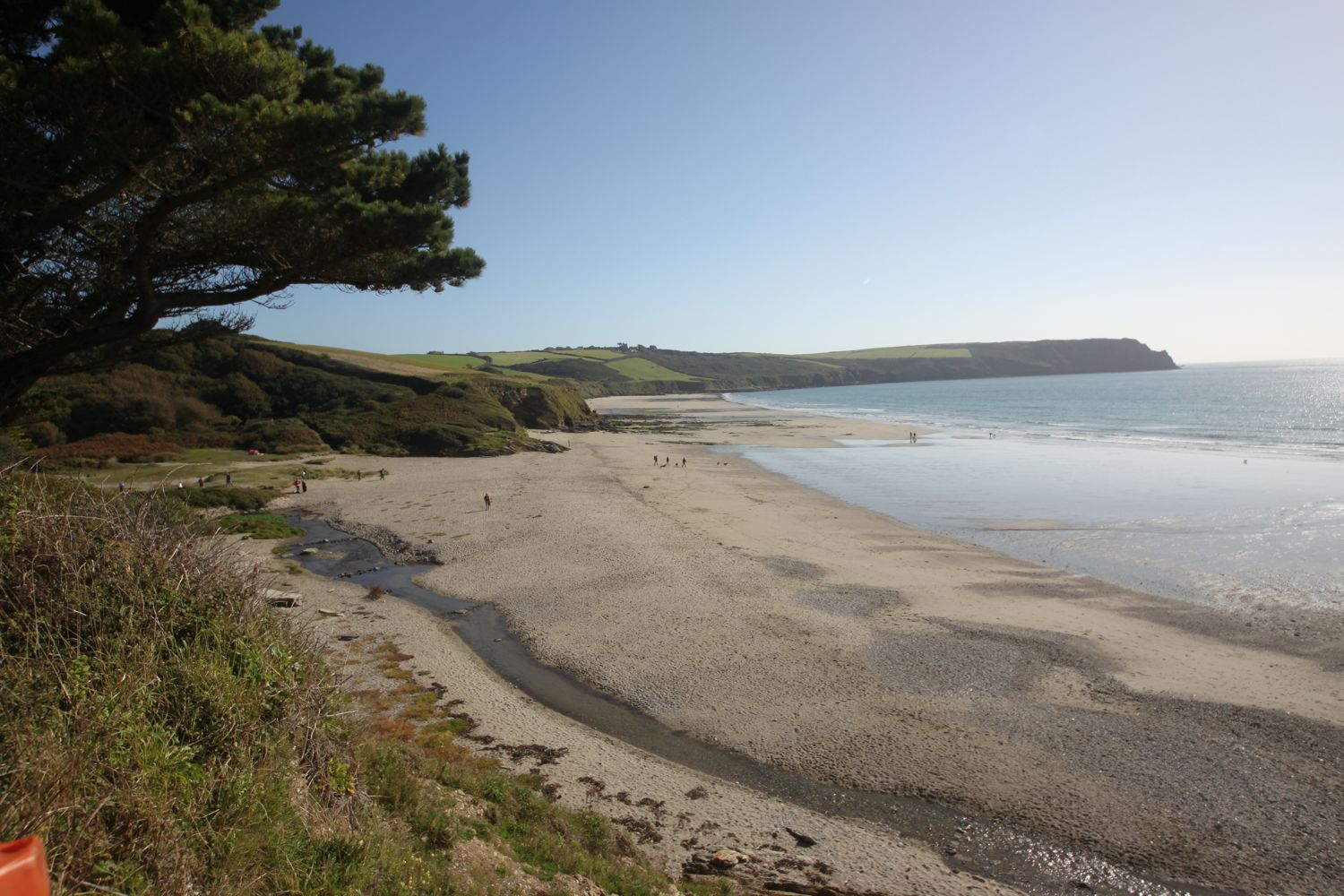view back over pendower beach and carne beach