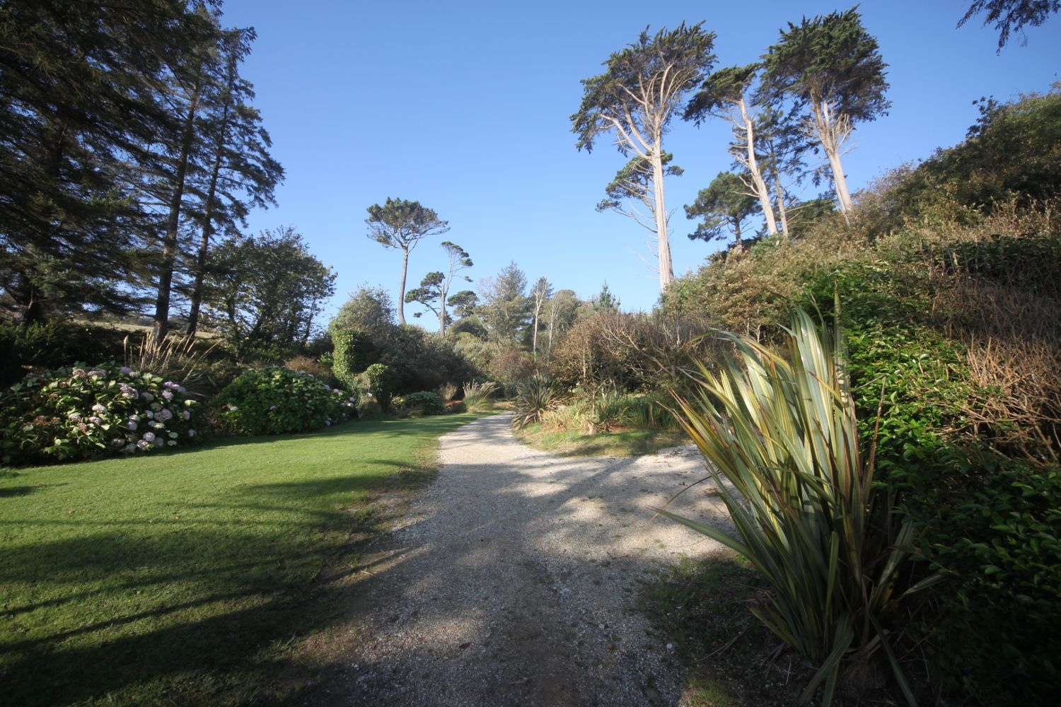 sub tropical gardens at meudon hotel