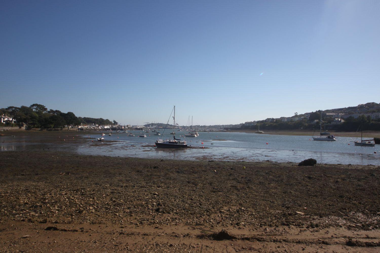 estuary 4.jpg