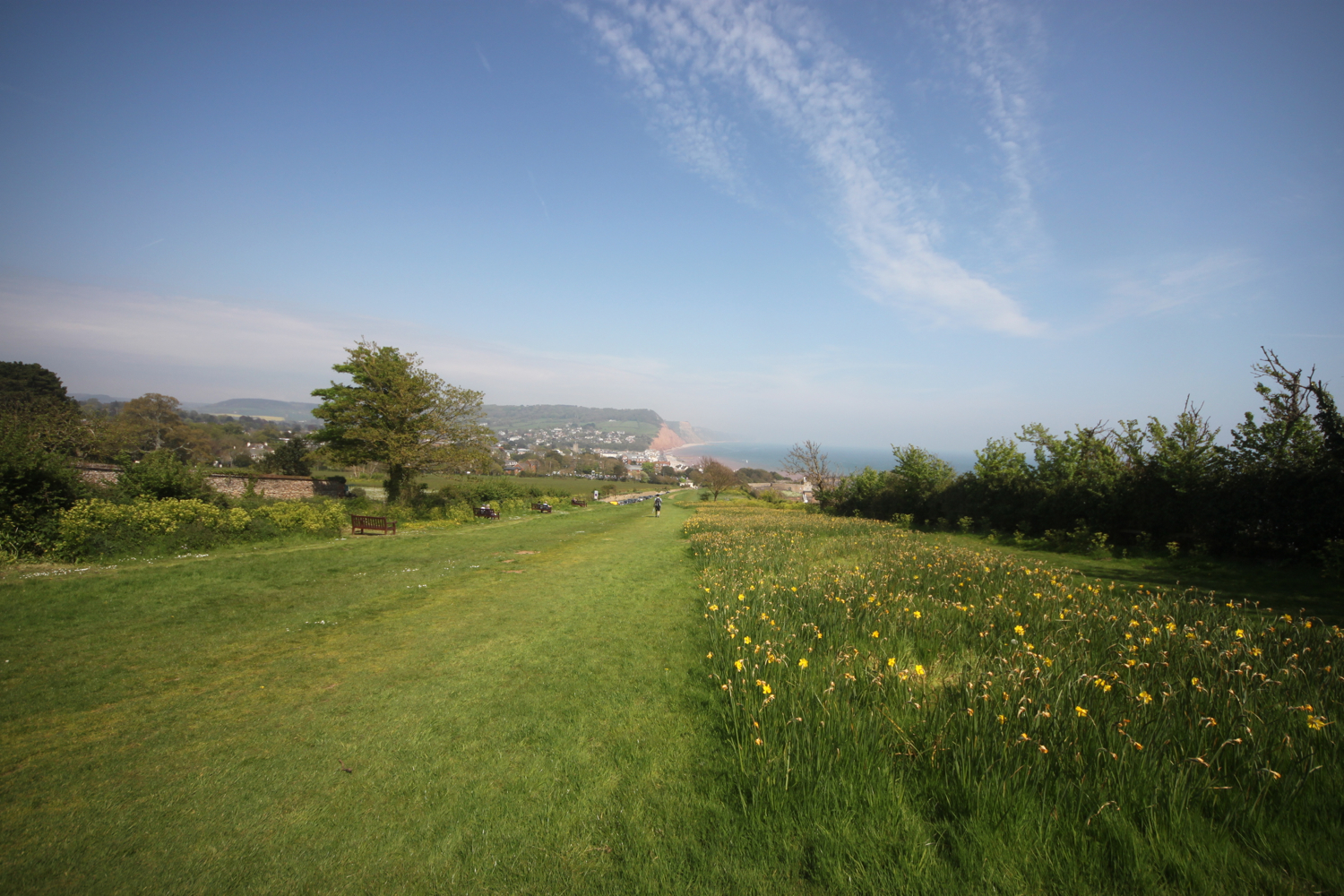 view over sidmouth