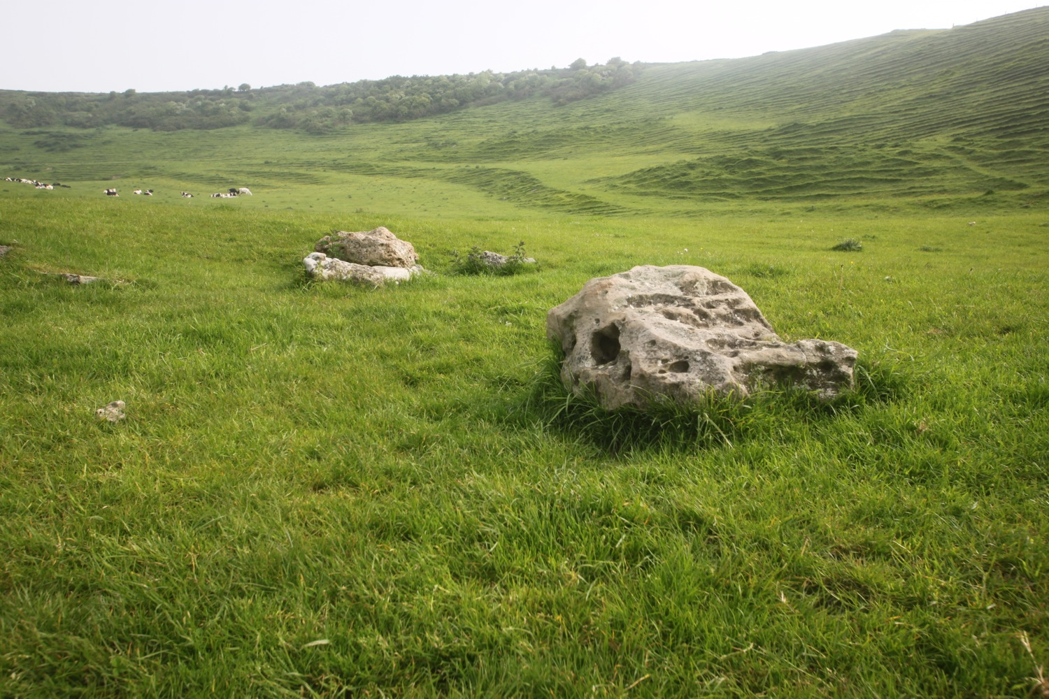 two large stones
