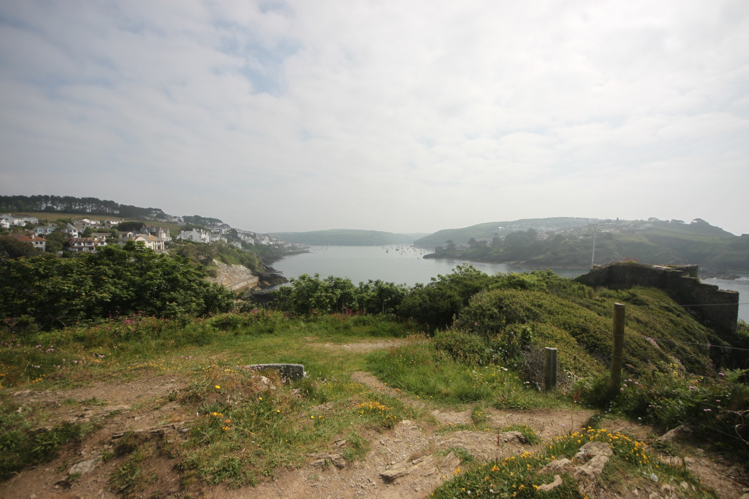 view over fowey