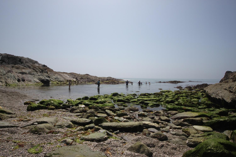 heaving lansallos beach