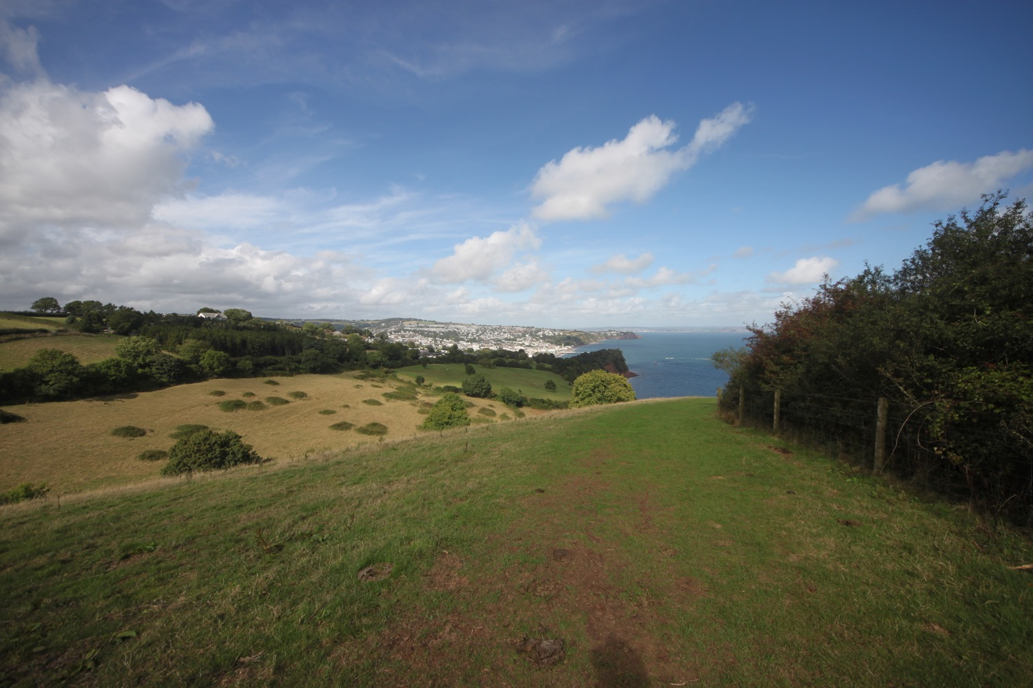 view over teignmouth