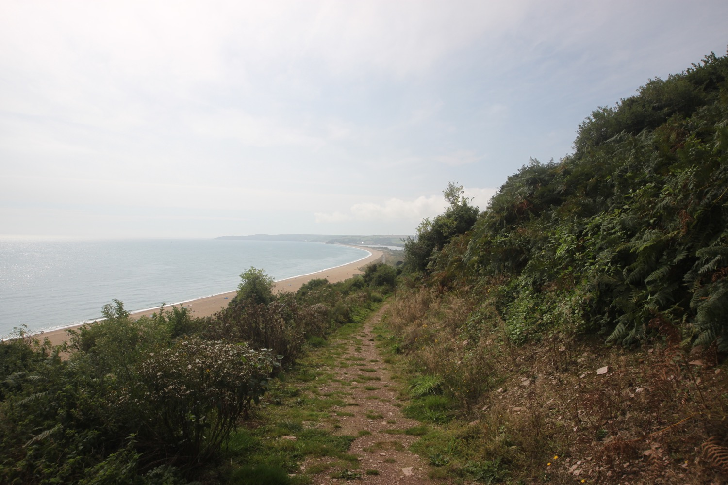 view over slapton sands