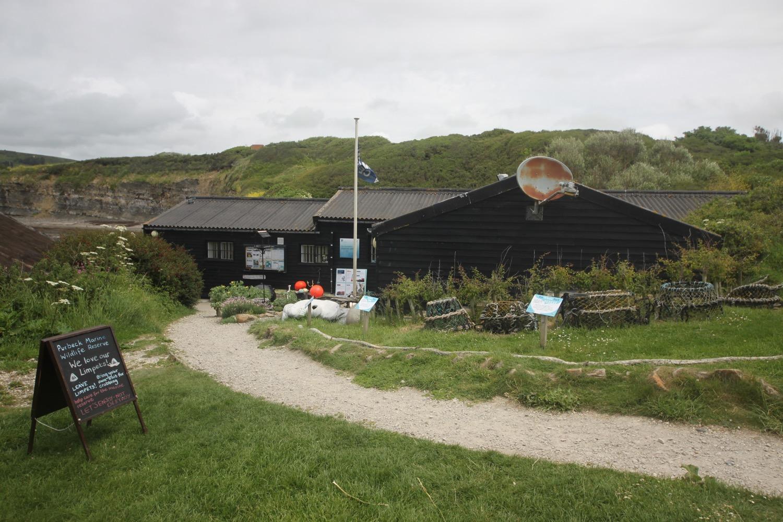 purbeck marine wildlife reserve