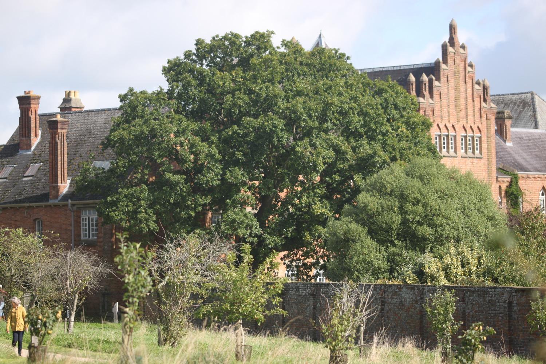 quarr abbey 10.jpg