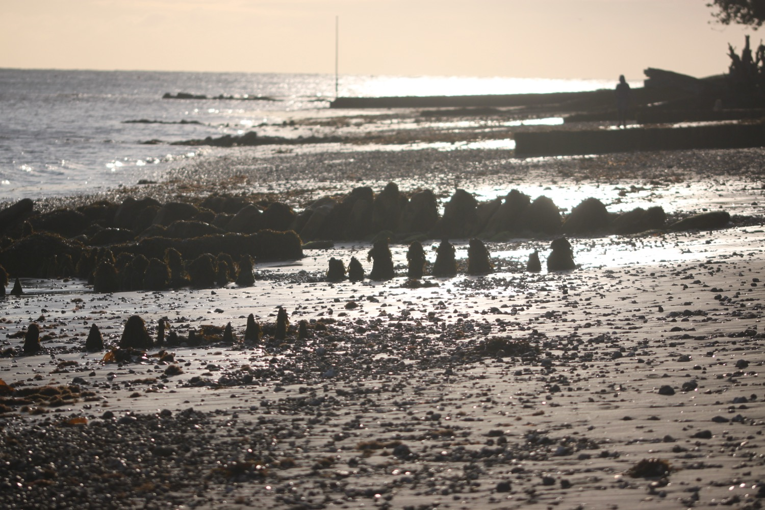 bembridge point beach.jpg 9.jpg