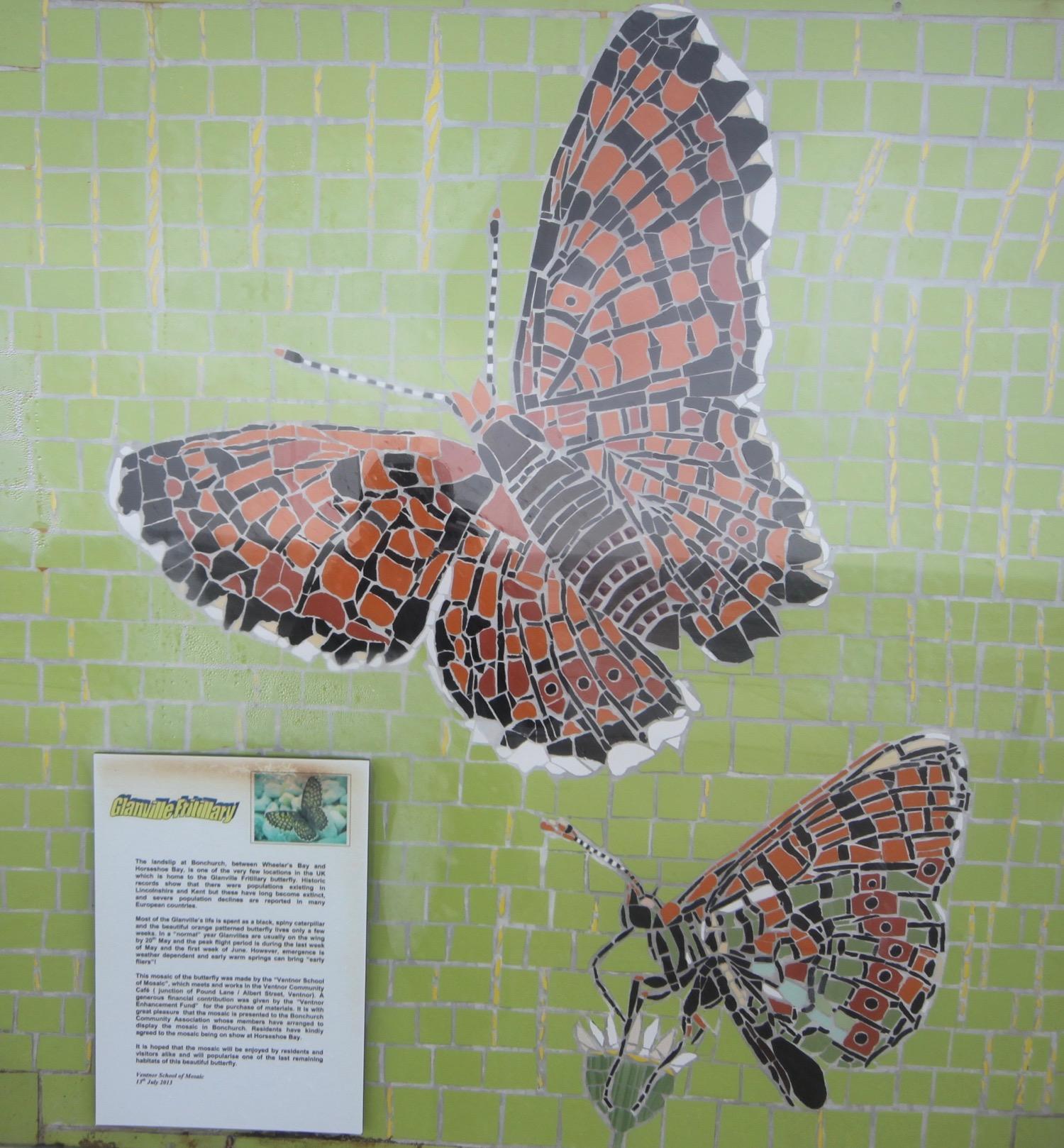 glanville fritillary