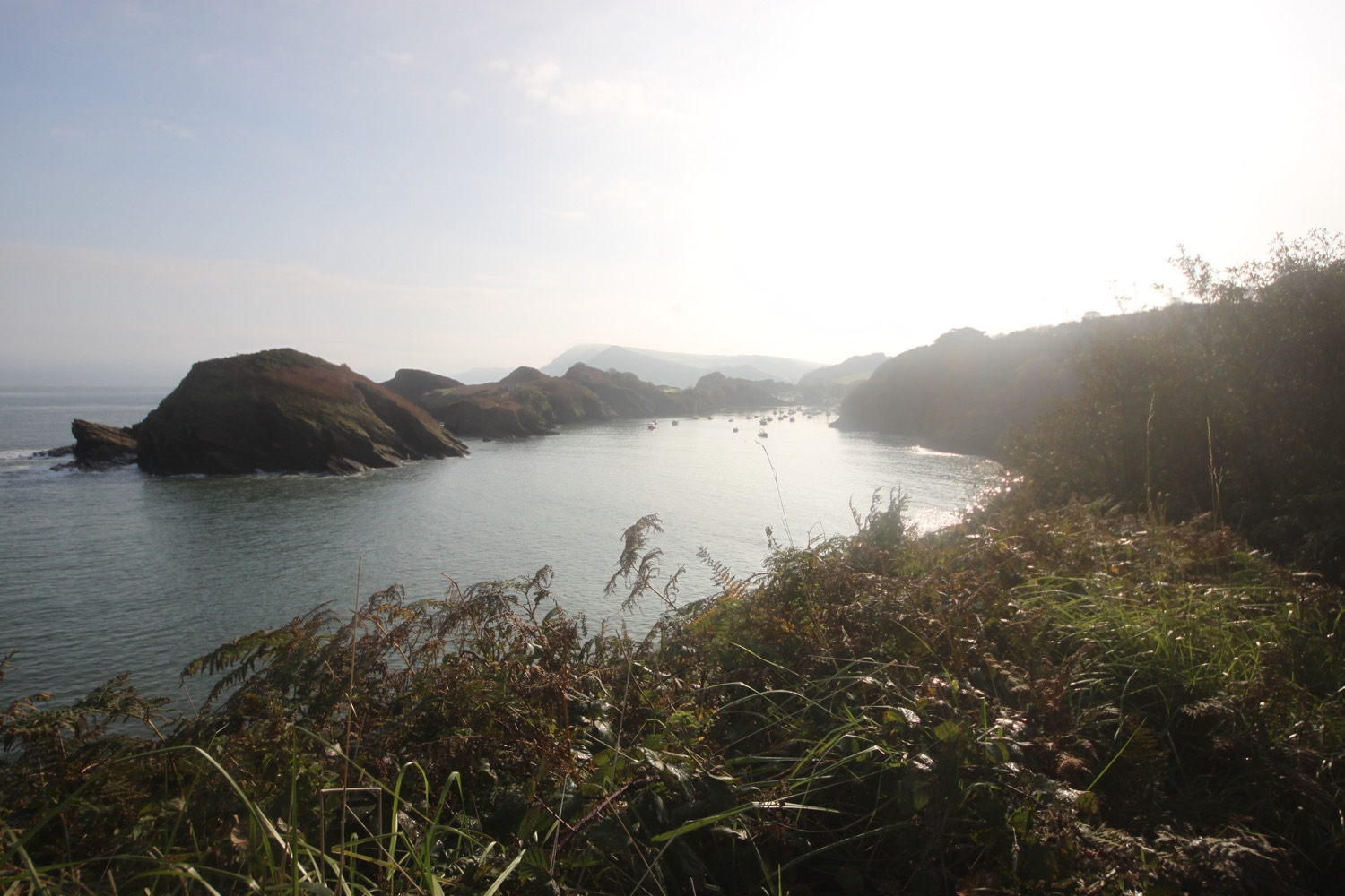 view back over watermouth bay