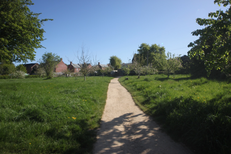 bridport community orchard