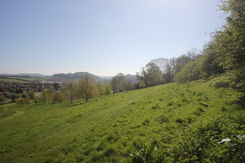 allington hill 5.jpg