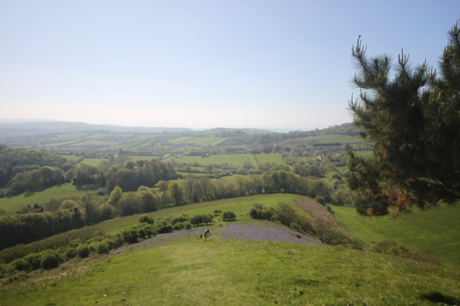 colmers hill 1.jpg