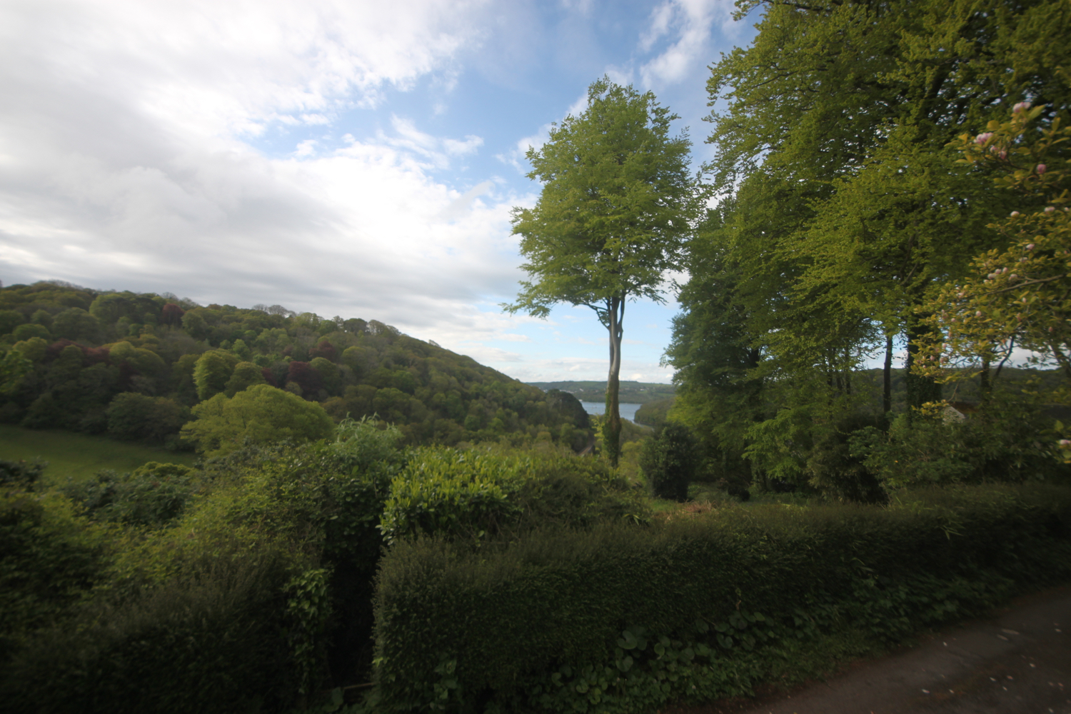 the view from herons rest