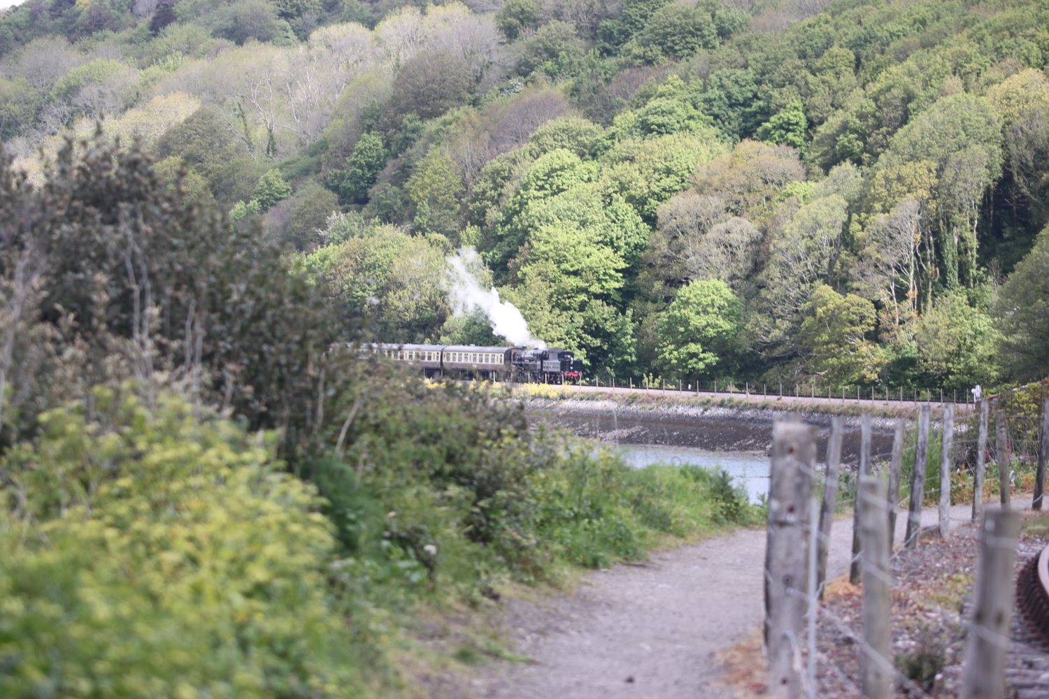 steam train 1.jpg