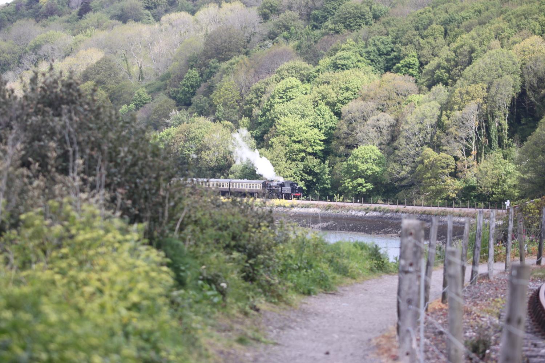 steam train 1.jpg
