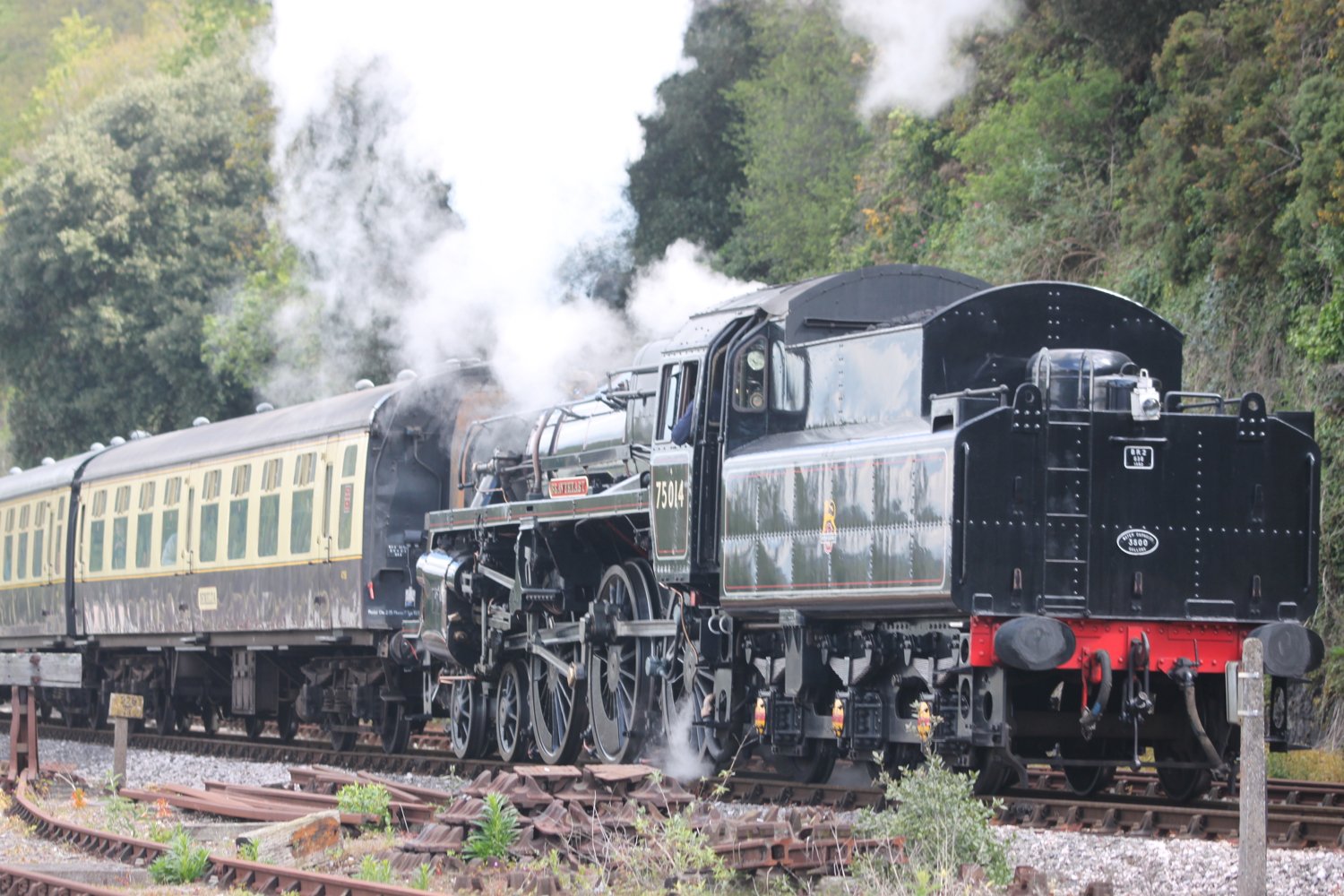 steam train 3.jpg