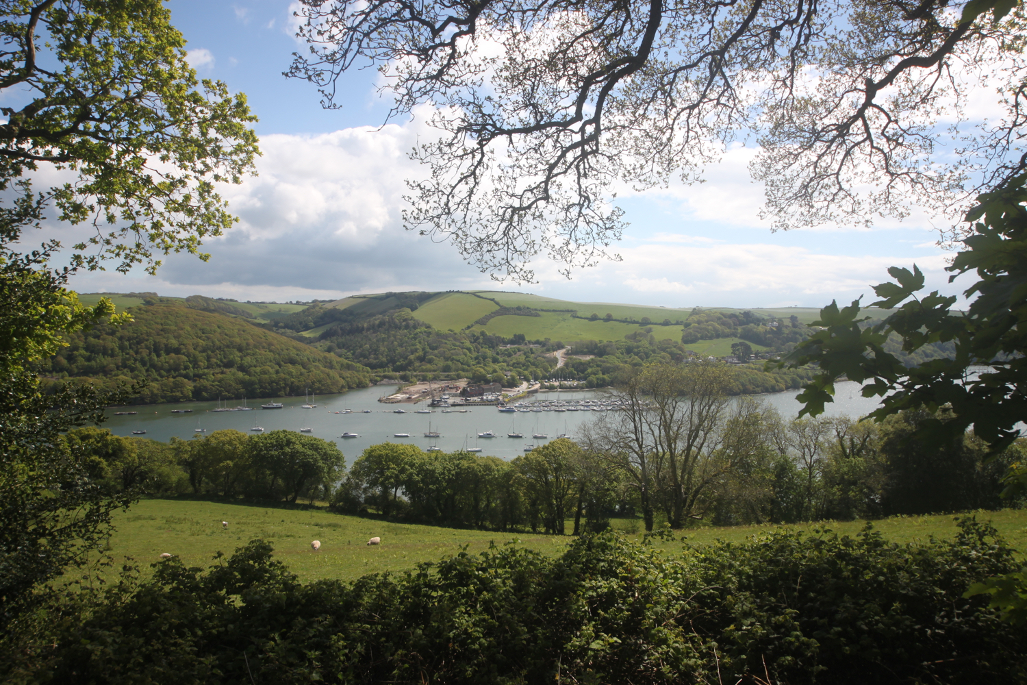 view over to noss marina