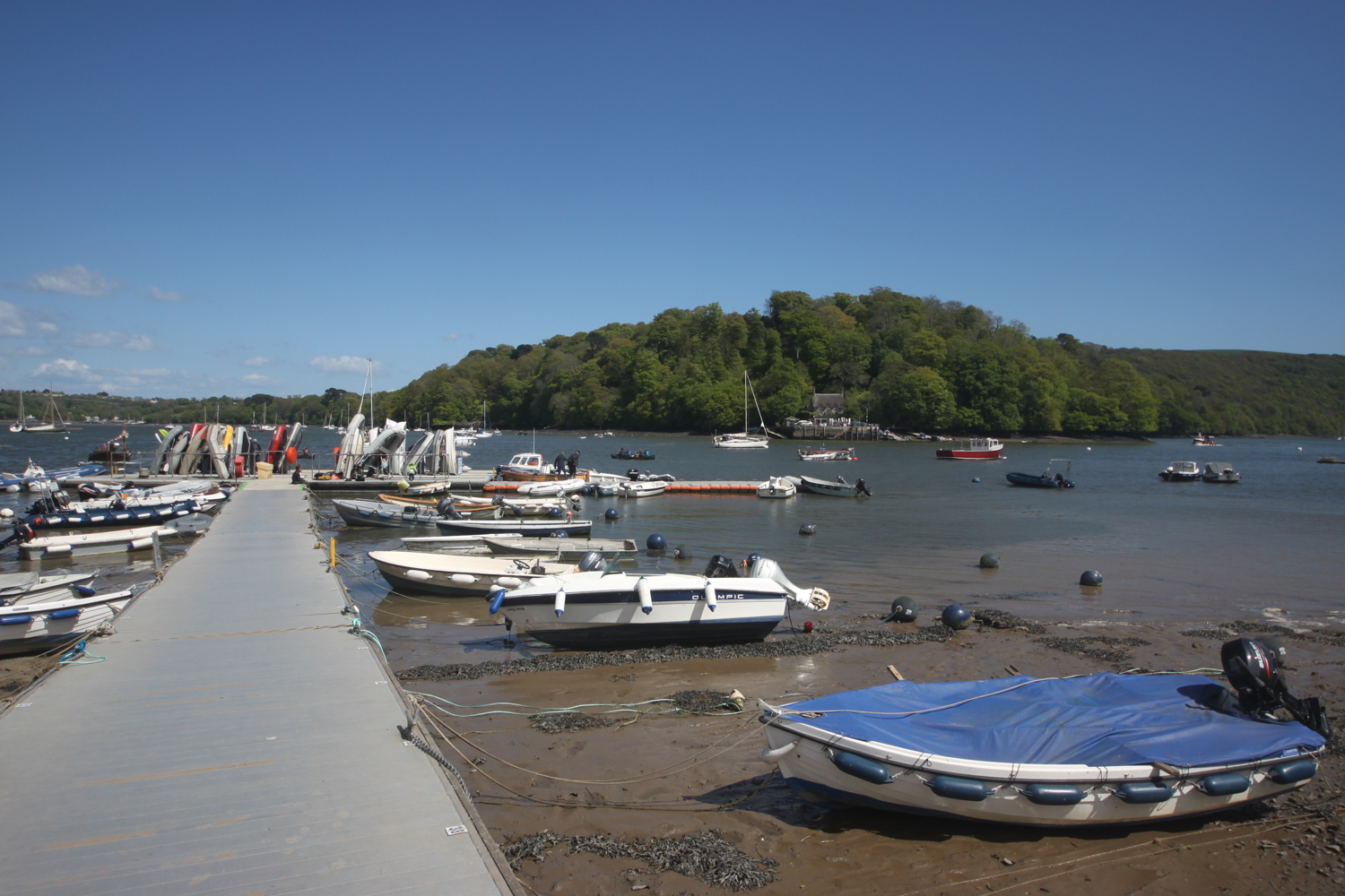 river dart at dittisham