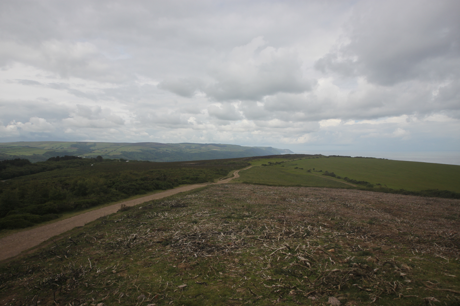 the (murky) view from selworthy beacon