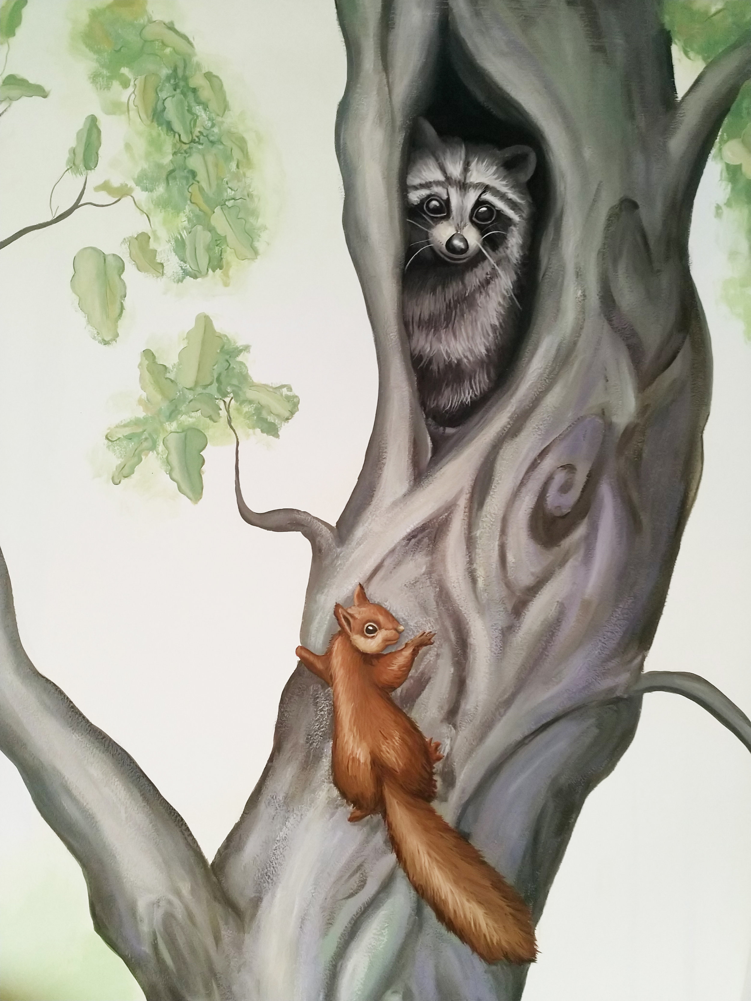 Top of Oak tree.jpg
